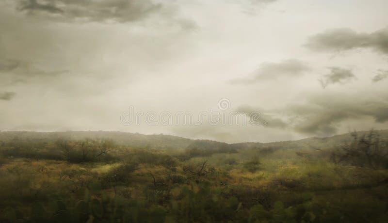 Paisaje de niebla del valle imágenes de archivo libres de regalías