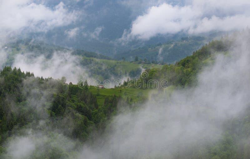 Paisaje de niebla del verano pastoril del parque nacional de Apuseni en Rumania Casa rural en Forest Slope Among The Romanian ver imagenes de archivo