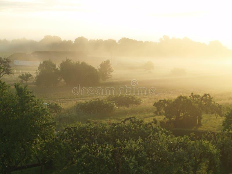 Paisaje de niebla en la madrugada (Burgenland/A fotografía de archivo