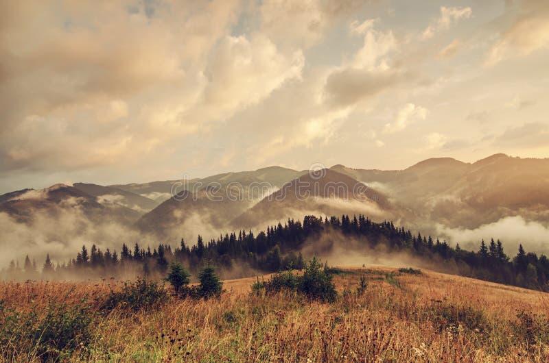 Paisaje de niebla de la ma?ana fotografía de archivo libre de regalías