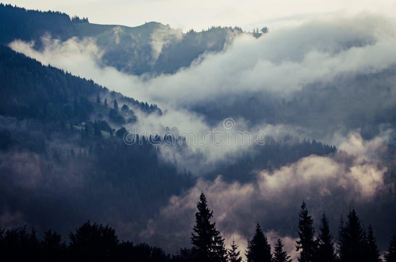 Paisaje de niebla de la ma?ana foto de archivo libre de regalías