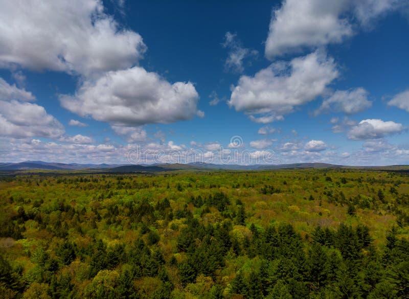 Paisaje de Pennsylvania de las montañas de Pocono con el prado y el bosque verdes fotos de archivo