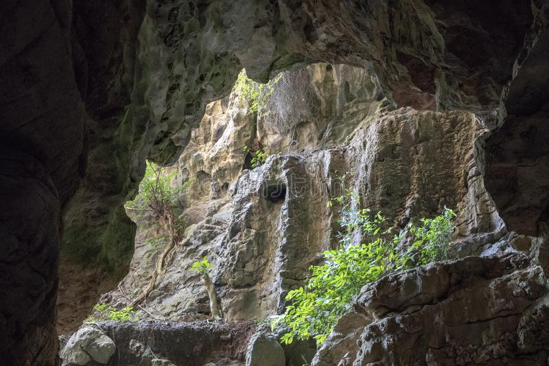 Paisaje de piedra de la cueva con verdor Opinión antigua de la cueva a la exploración de la montaña del bosque de la selva en nat imagen de archivo libre de regalías