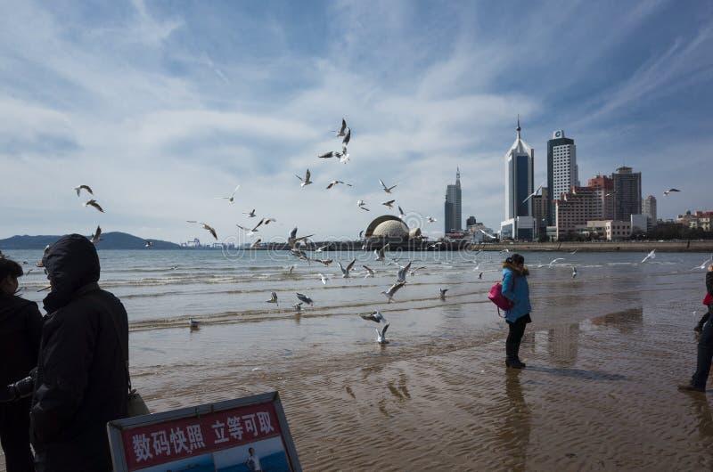 Paisaje de Qingdao imagen de archivo libre de regalías