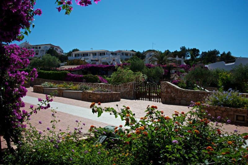 Paisaje De Residencias De Lujo Con Los Jardines Llenos De Flores ...