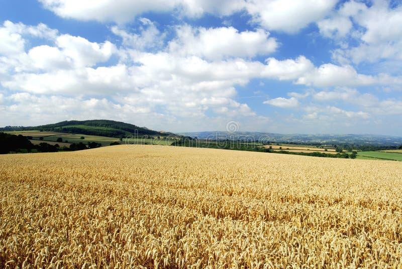 Paisaje de Shropshire foto de archivo libre de regalías