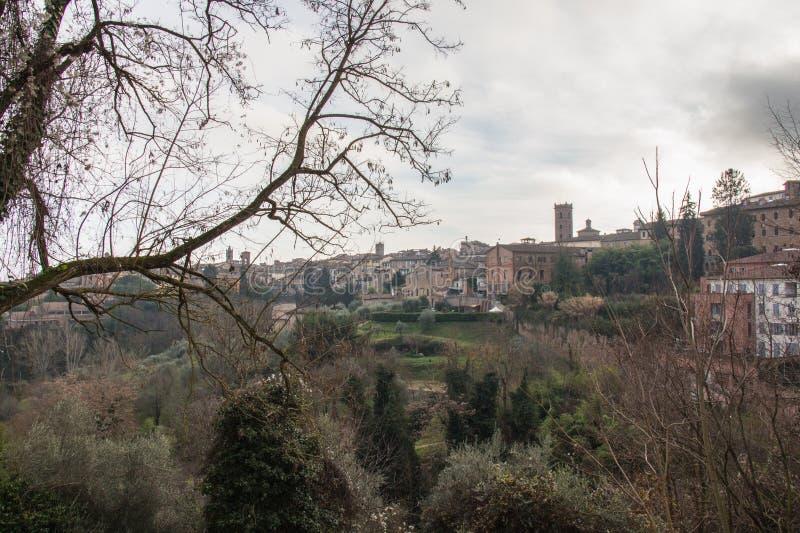 Paisaje de Siena Toscana, Italia fotos de archivo libres de regalías