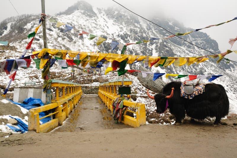 Paisaje de Sikkim imagen de archivo