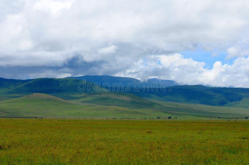 Paisaje de Tanzania imagen de archivo