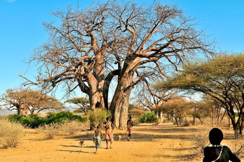 Paisaje de Tanzania foto de archivo libre de regalías