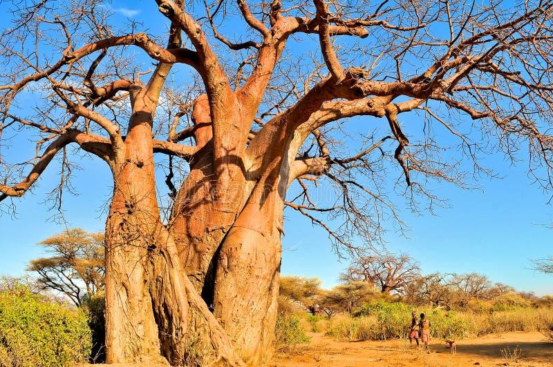 Paisaje de Tanzania fotos de archivo