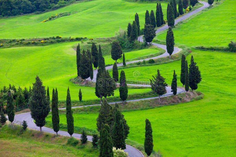 Paisaje de Toscana con torcer el camino y cipreses foto de archivo