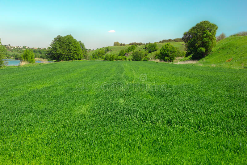 Paisaje de un valle herboso verde, de árboles, de colinas y de un cielo azul fotografía de archivo libre de regalías
