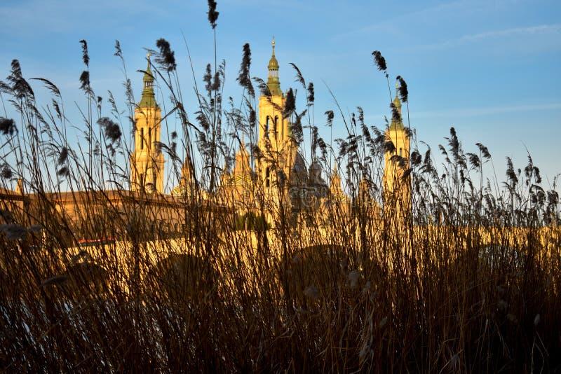paisaje de una salida del sol en la basílica católica pilar en Zaragoza además del río Ebro con algunos árboles y plantas en el p fotos de archivo