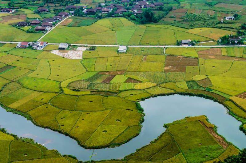 Paisaje de Vietnam: El arroz coloca con un río en el valle del hijo-Viet Nam del hijo-Lang del gente-CCB de la minoría étnica de  imagen de archivo