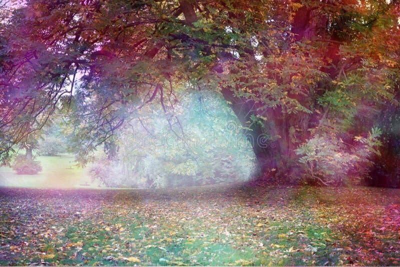 Paisaje del árbol del Faerie de la fantasía fotos de archivo
