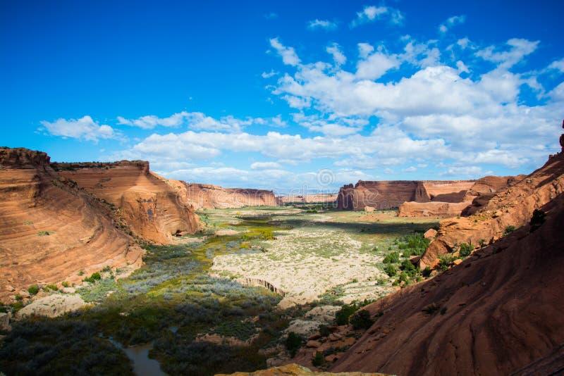 Paisaje del barranco del desierto fotos de archivo