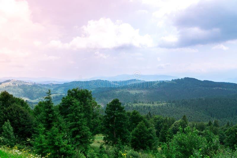 Paisaje del bosque de la monta?a debajo del cielo de la tarde con las nubes en luz del sol foto de archivo