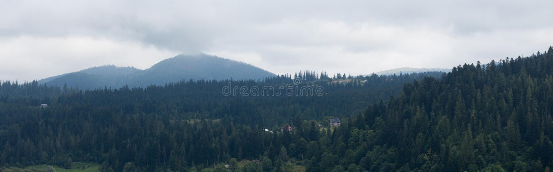 Paisaje del bosque del pueblo, niebla de la montaña imagen de archivo
