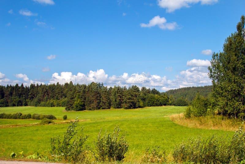Paisaje del campo con el gran cielo y las nubes panorámicos fotografía de archivo