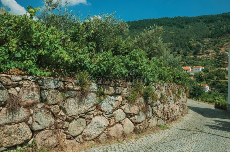 Paisaje del campo con la calle y la pared de piedra curvadas imagenes de archivo