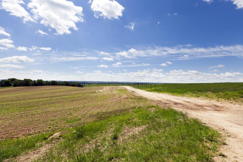 paisaje del campo de la arena del camino foto de archivo libre de regalías