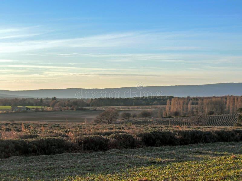 Paisaje del campo de Provancal en el tiempo de la puesta del sol en el invierno, Vaucluse, Provence, Francia meridional, Europa fotografía de archivo libre de regalías
