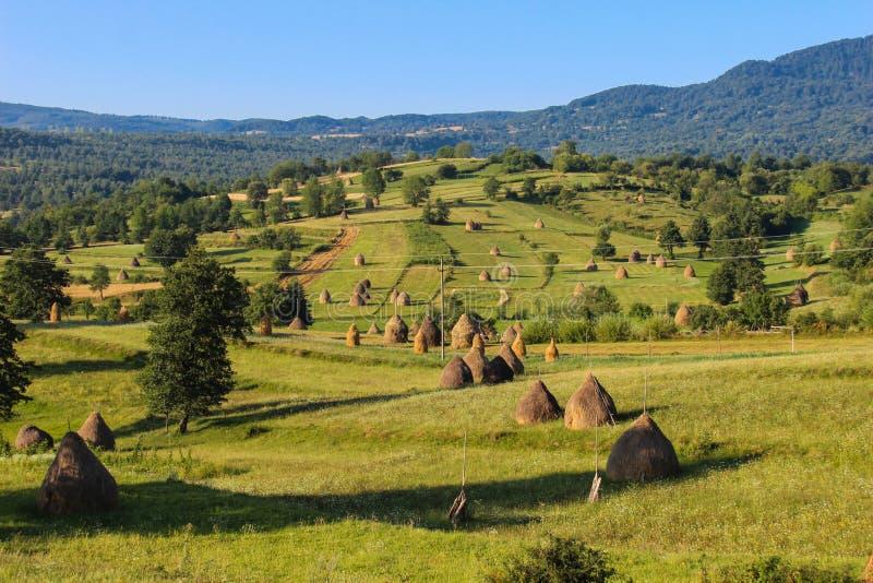 Paisaje del campo en Maramures, Rumania fotos de archivo libres de regalías