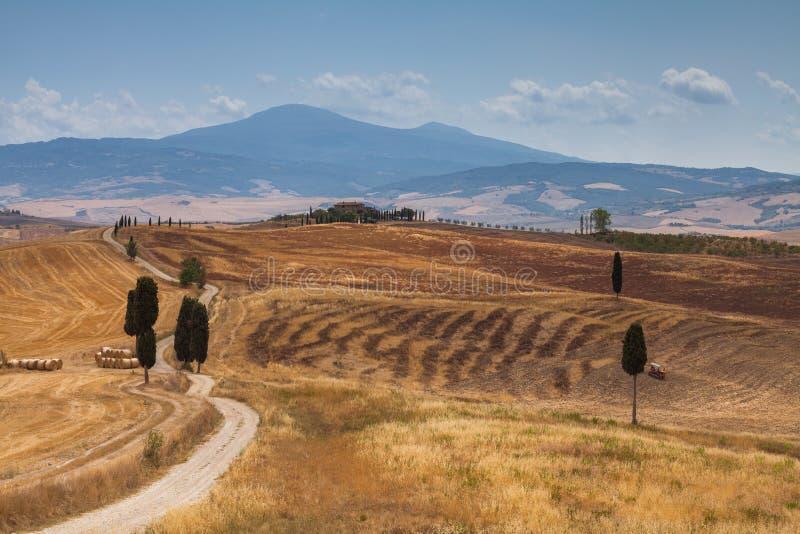 Paisaje del campo en Val d ?Orcia, Toscana, Italia fotografía de archivo