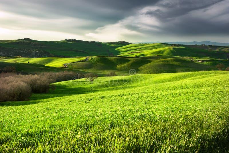 Paisaje del campo Toscana, Italia fotos de archivo libres de regalías