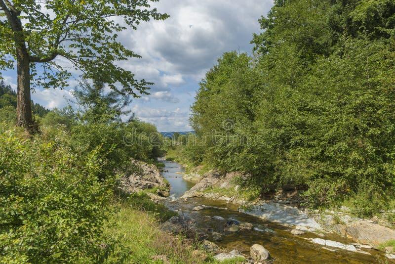 Paisaje del día de verano con el río, el bosque y el cielo nublado foto de archivo libre de regalías