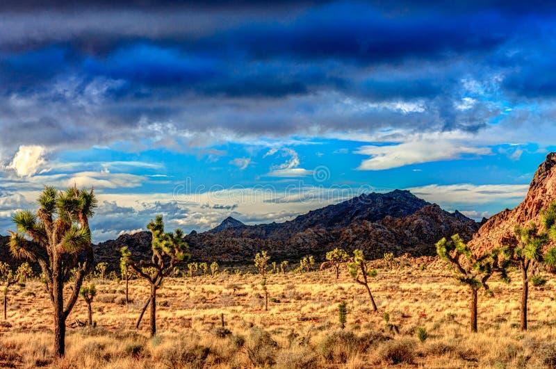 Paisaje del desierto con los cielos azules profundos imagen de archivo libre de regalías