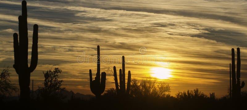 Paisaje del desierto de Arizona, área de Phoenix, Scottsdale imagenes de archivo