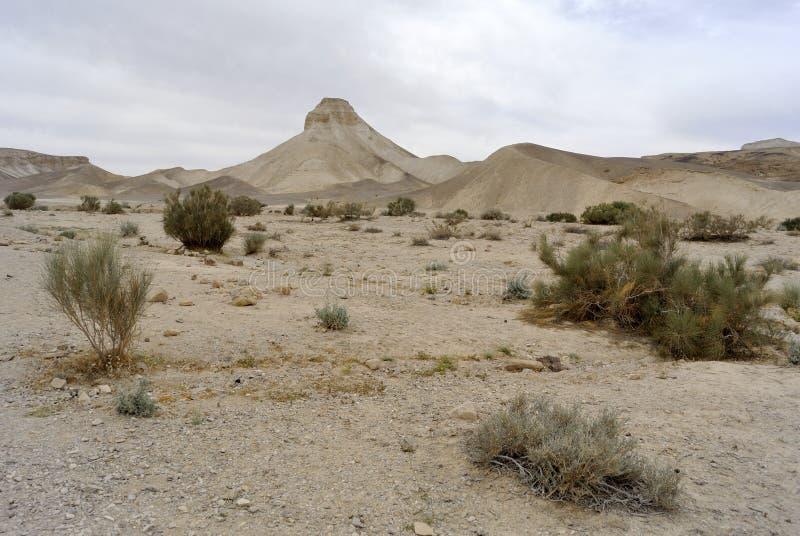 Paisaje del desierto de Judea. fotografía de archivo libre de regalías