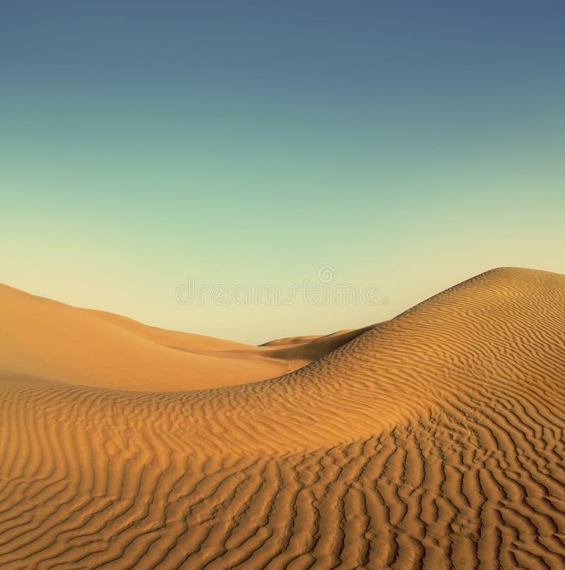 Paisaje del desierto de la tarde - estilo retro del vintage imágenes de archivo libres de regalías