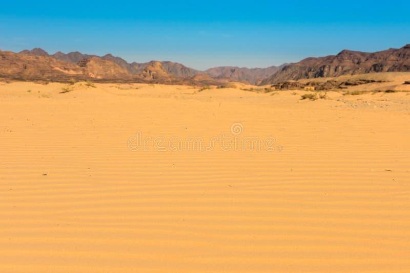 Paisaje del desierto de Sinaí fotografía de archivo