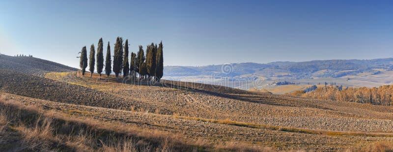 Paisaje del desierto de Toscana fotos de archivo libres de regalías