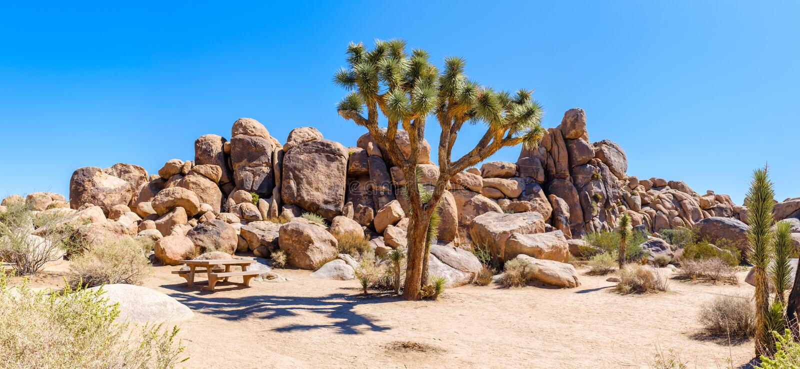 Paisaje del desierto en Joshua Tree National Park fotografía de archivo