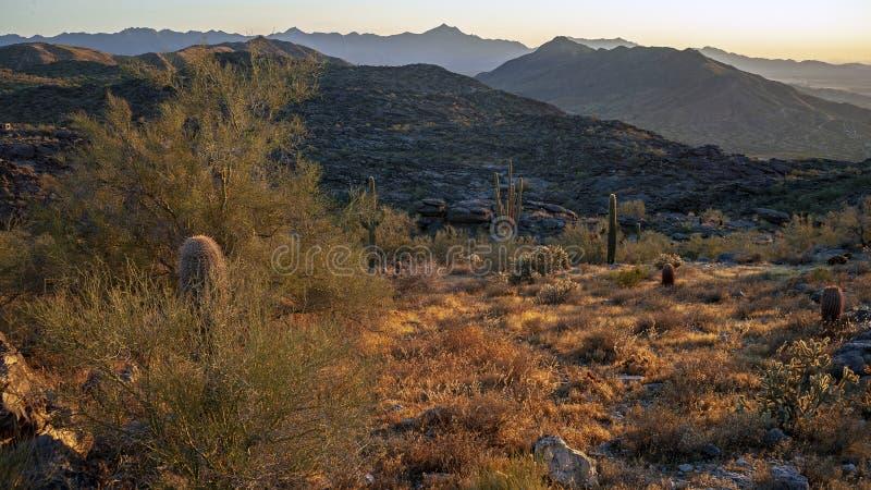 Paisaje del desierto y de montañas cerca de Phoenix Arizona fotografía de archivo libre de regalías