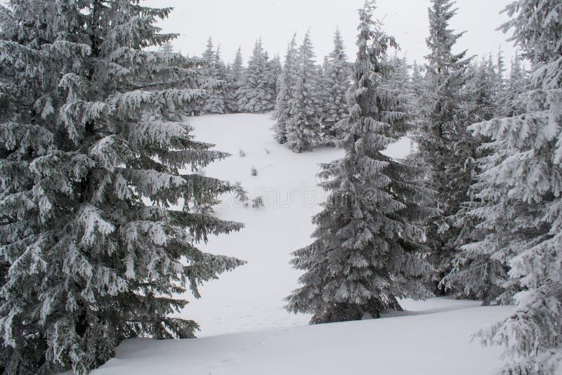 Paisaje del invierno alto en las montañas imágenes de archivo libres de regalías