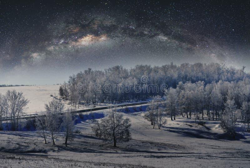Paisaje del invierno, bosque cubierto por la nieve con el cielo lleno de estrellas fotografía de archivo libre de regalías