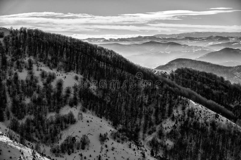 Paisaje del invierno, bosque del abeto cubierto por la nieve y picos de montaña en la distancia, Mt Kopaonik, Serbia imágenes de archivo libres de regalías
