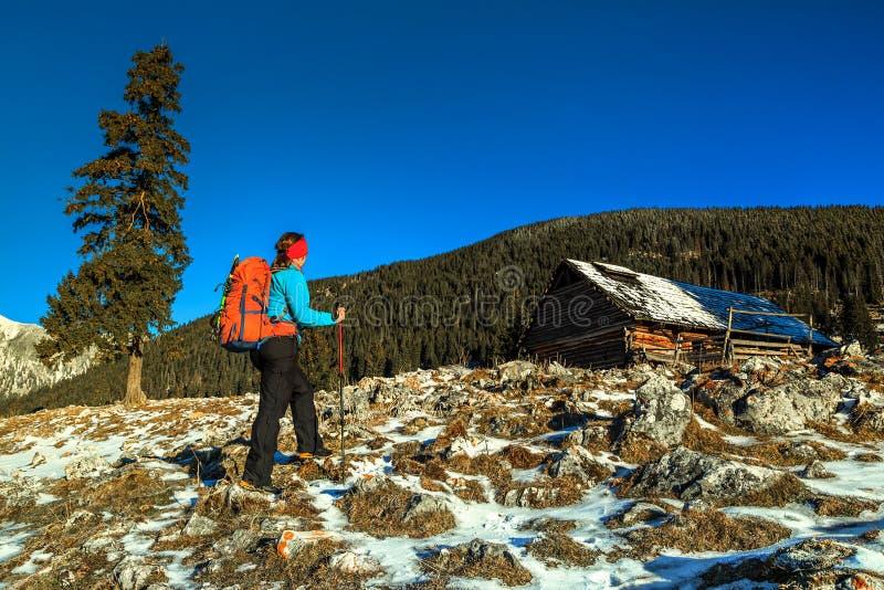 Paisaje del invierno con la mujer del caminante, Cárpatos, Transilvania, Rumania, Europa fotografía de archivo