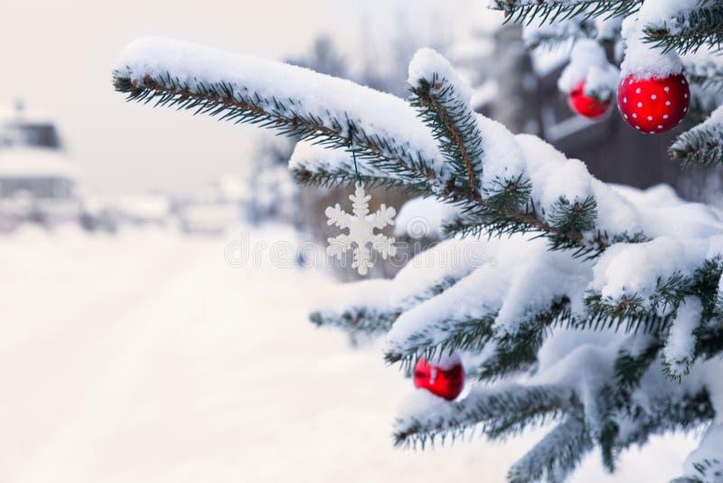 Paisaje del invierno con la rama de árbol de pino y el camino nevoso fotos de archivo