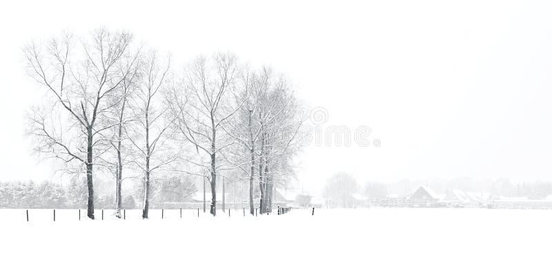 Paisaje del invierno con las casas fotografía de archivo