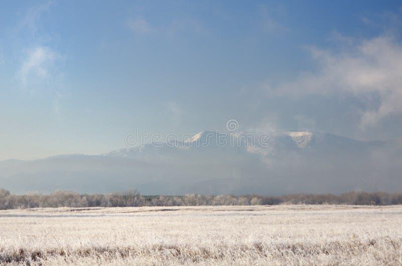 Paisaje del invierno con las montañas nevosas detrás del campo cubierto con la hierba seca congelada debajo del cielo azul marino imagenes de archivo