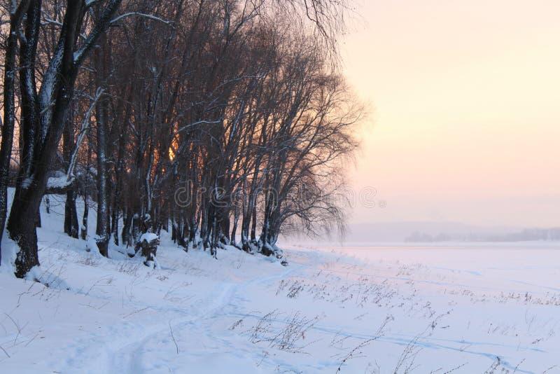 Paisaje del invierno con los árboles nevados, en el lago o el río en la puesta del sol o la salida del sol foto de archivo