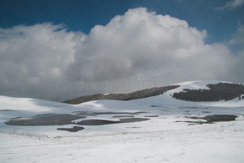 Paisaje del invierno con nieve foto de archivo libre de regalías