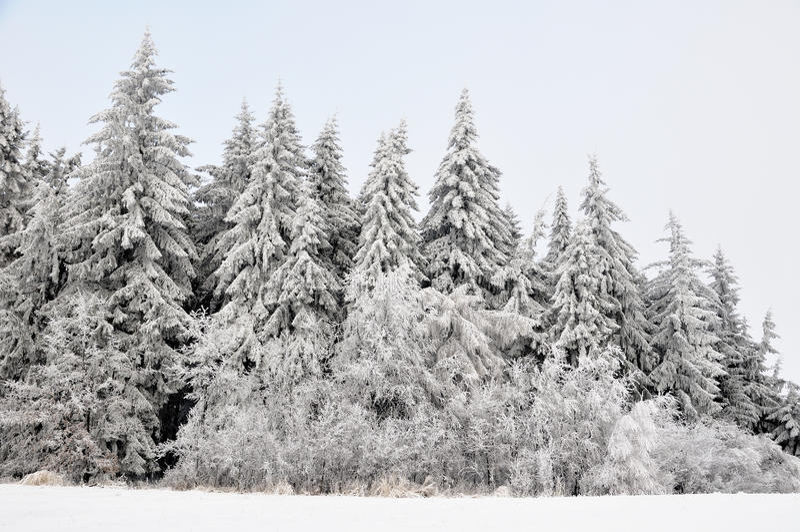 Paisaje del invierno con nieve en montañas fotografía de archivo
