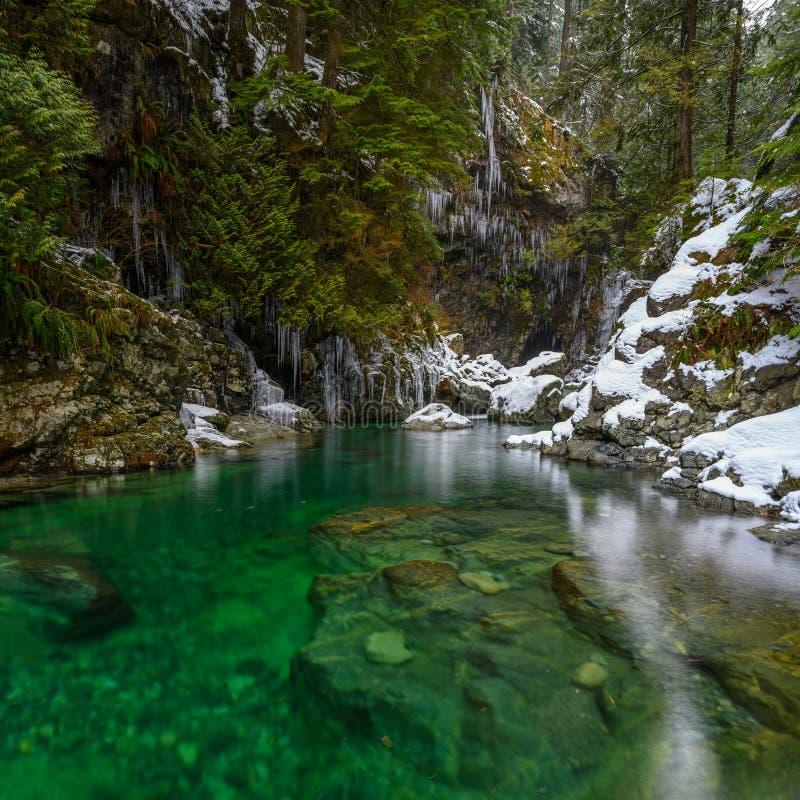 Paisaje del invierno de la cala de Lynn en Lynn Canyon Park en Vancouver del norte foto de archivo libre de regalías